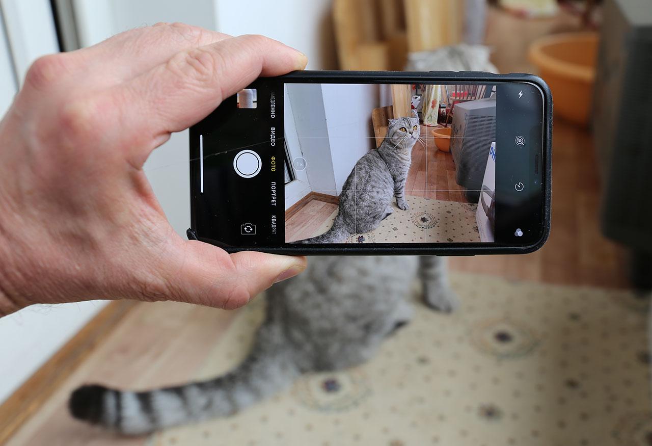 Курсы обработки фотографий на айфон